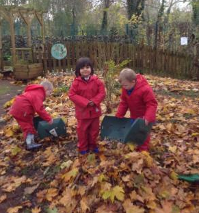 forest schools 7