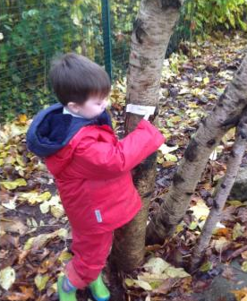 forest schools 8